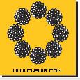 8×31SW,8*31sw,8-31sw (1图)